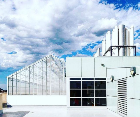 CSIRO Glasshouse Completed project job electrical works completed by Taylor Made Electrical Brisbane Electrician